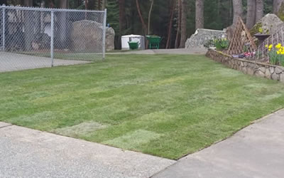 New Lawn Installations Brownsburg Indiana
