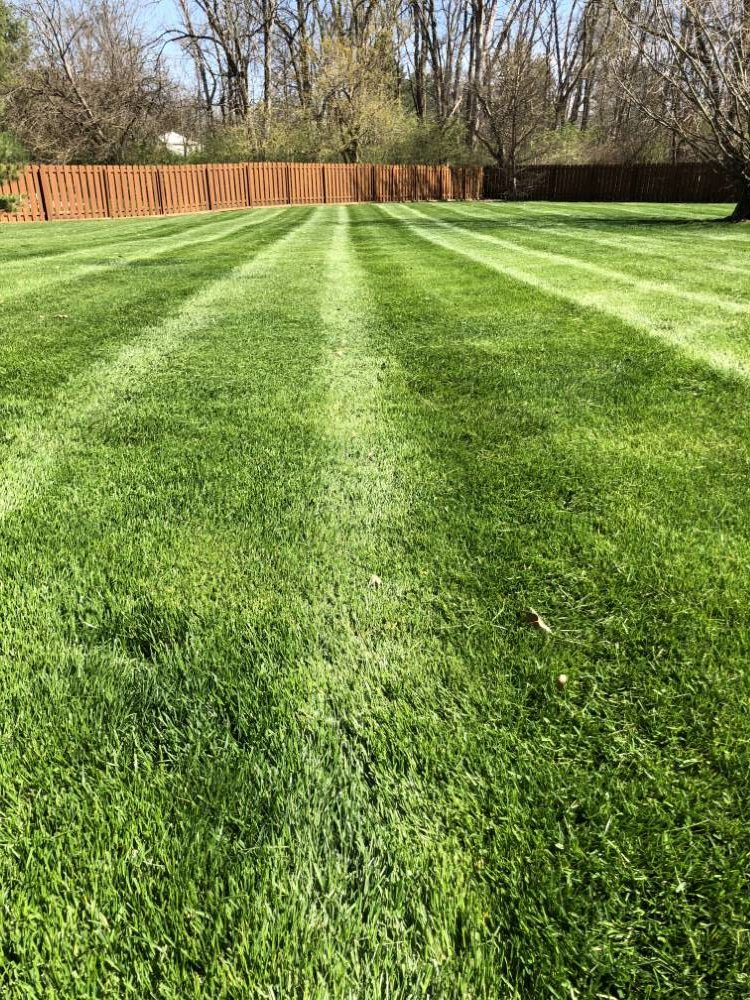 Lawn Mowing Brownsburg Indiana Schedule Your Consultation